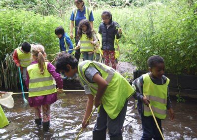 Pond Dipping Group