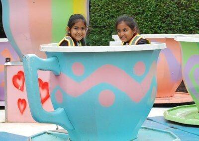 Wonderland Teacups